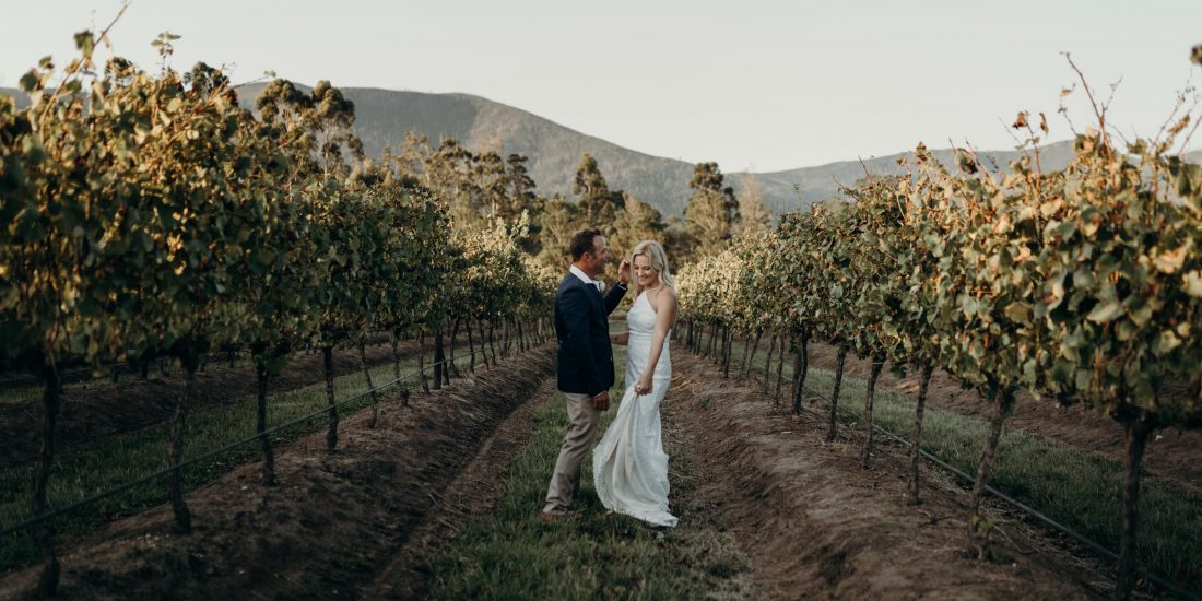 michelle brink, plettenberg bay, wedding photographer, venue, newstead, wine estate, restaurant, wedding photography, garden route, western cape, couple, vineyard, the crags, newstead wines, polo